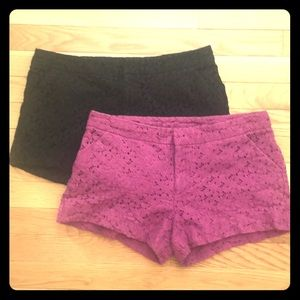 Nicole by Nicole Miller fuchsia lace shorts